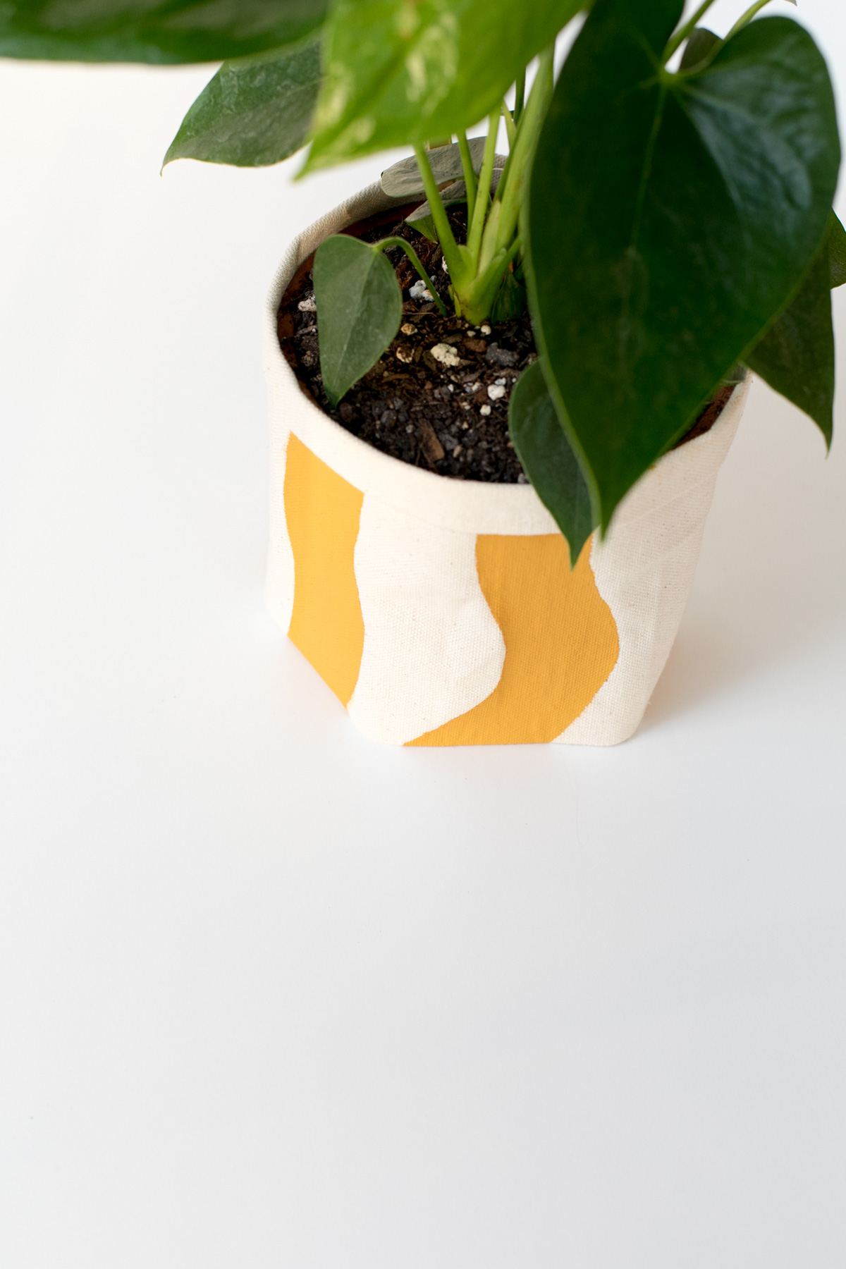 Diy No Sew Plant Wrap For All Your Naked Pots Ctrl Curate